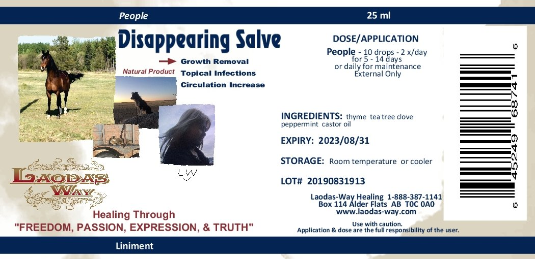 DISAPPEARING SALVE - People