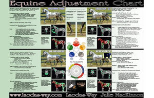 EQUINE ADJUSTMENT CHART