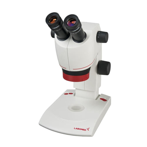 Student Grade Dissecting Microscope - MicroscopeHub
