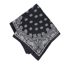 Load image into Gallery viewer, SILKY SCARF VINTAGE PAISLEY BLACK