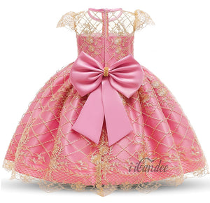 Kids Baby Toddler Girl Rose Pink Lace Beaded Flower Princess Formal Embroidered Dress Gown • Special occasion dresses - iiCandee