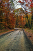 Autumn on a Fauqier County backroad