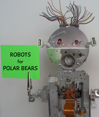 Robots for Polar Bears:  Botwan, First to Rise