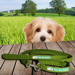 New Corduroy Polar Bear Protector Collars in Hemp/Organic Cotton