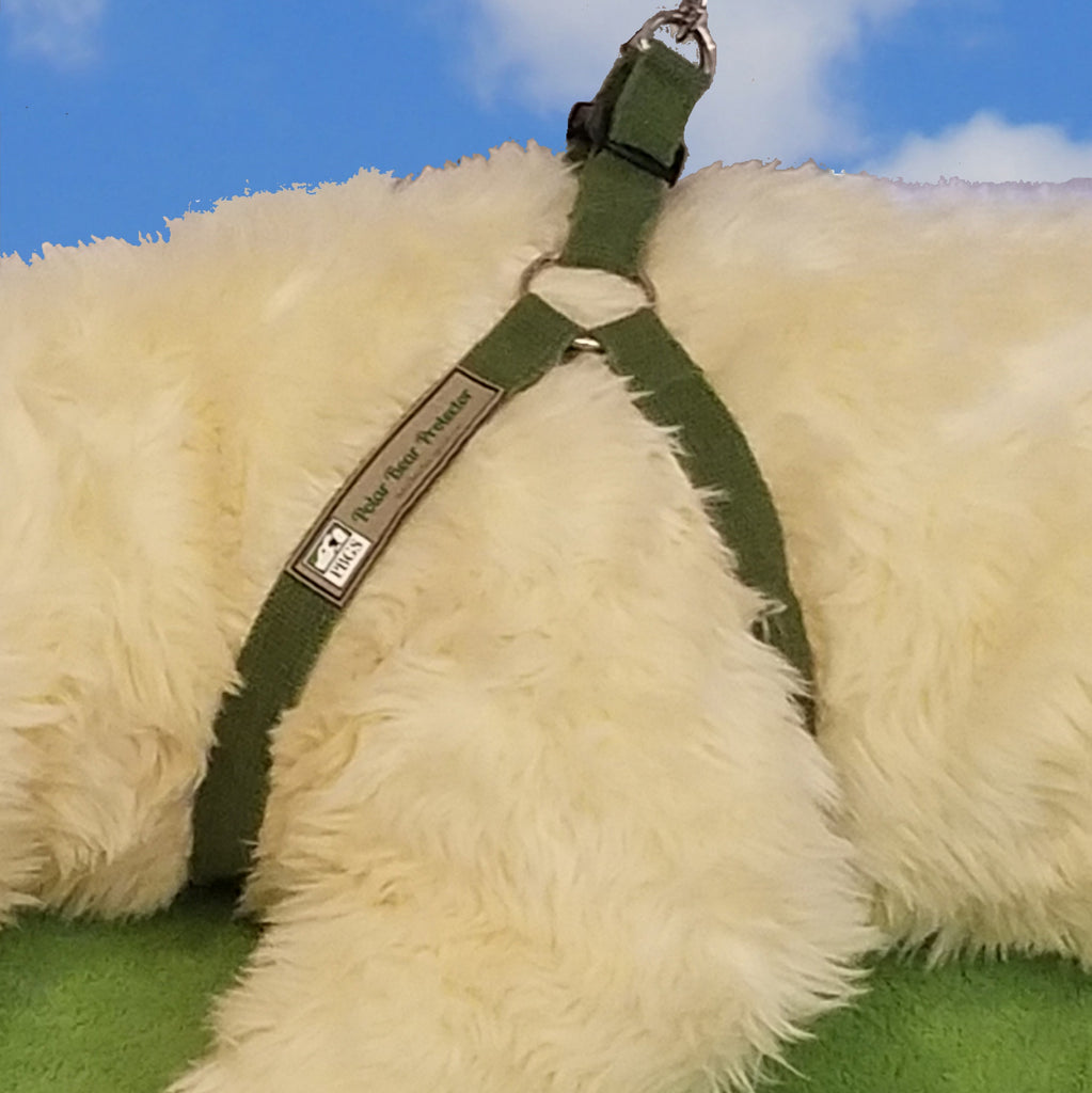Polar Bear Protector green hemp step-in harness