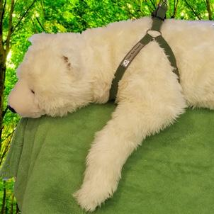 Polar Bear Protector green hemp harness shown on polar bear