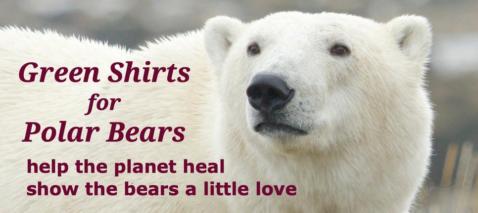 Green Shirts for Polar Bears are certified 100% organic cotton printed with water-based ink in a US plant powered by wind.