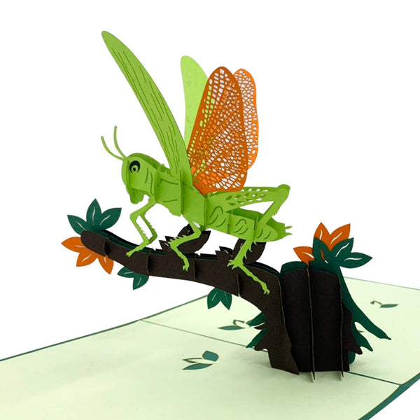Grasshopper 3D Pop Up Card