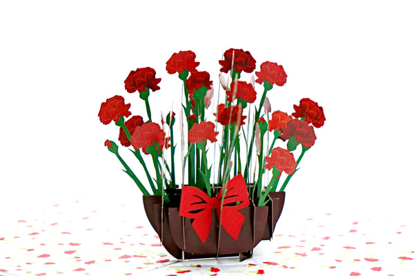 Carnation Pop Up 3D Card