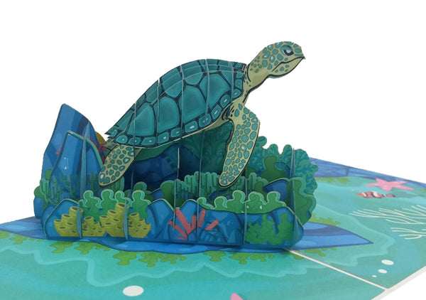 Turtle 3D Pop Up Card