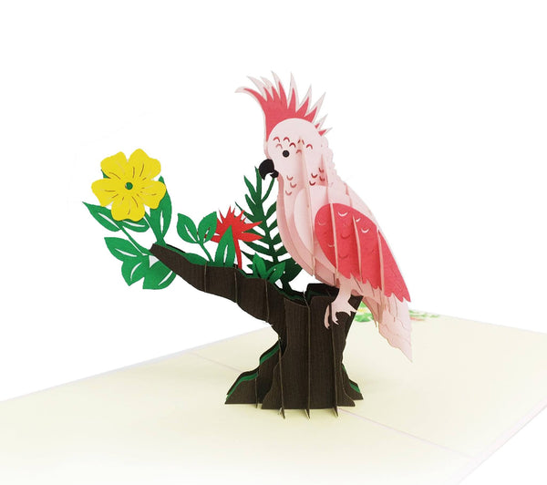 Parrot 3d Pop Up Card