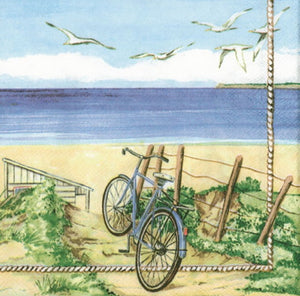 Cycle and Seashore 33 X 33 cm