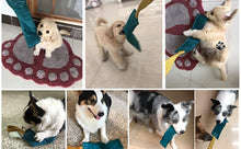 Load image into Gallery viewer, Dewonch No Stuffs Squeaky Leather Dog Bite Tug Toy for Puppy to Play