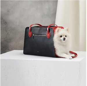 Ruby Shaya Pet Carrier