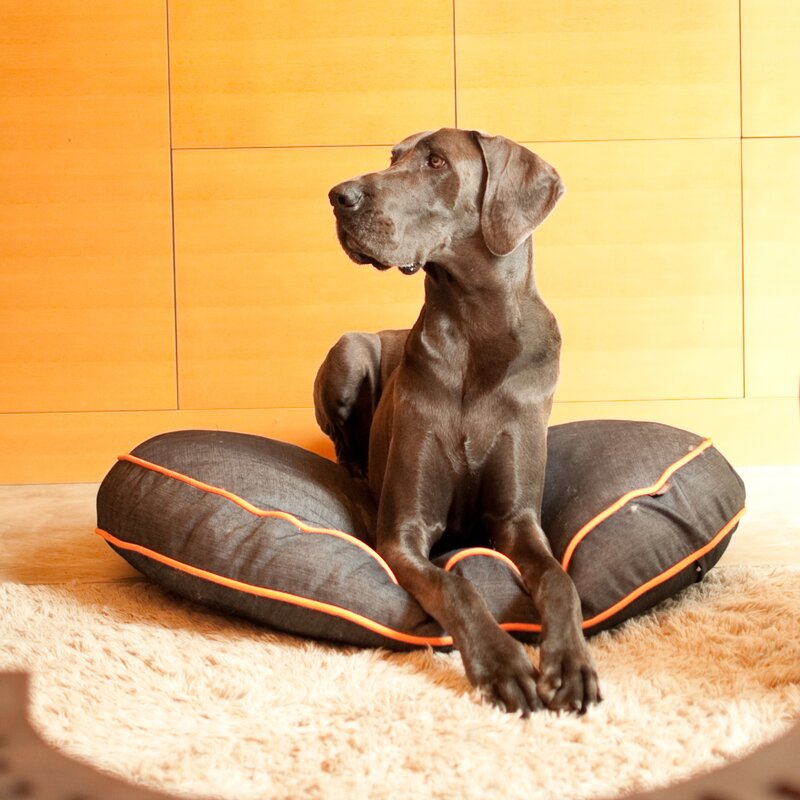 Signature Urban Denim Round Pet Duvet Cover