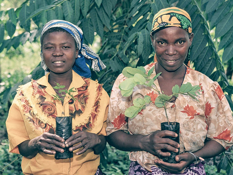 women planting trees africa seed for change nia thomas climate change