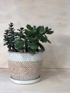 Boho RAW Medium Planter