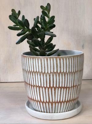 Shell Raw Small Planter