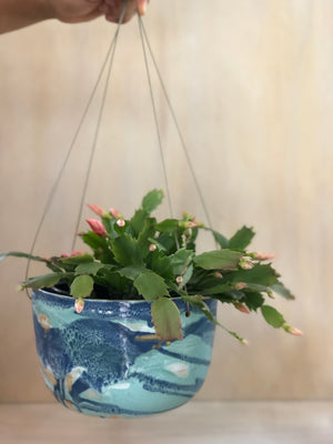Ocean Large Hanging Planter