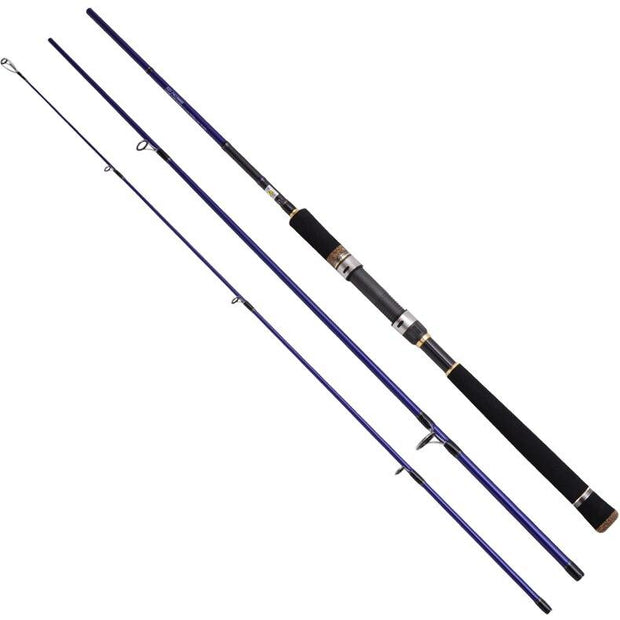 Sea Bass Fishing Rods