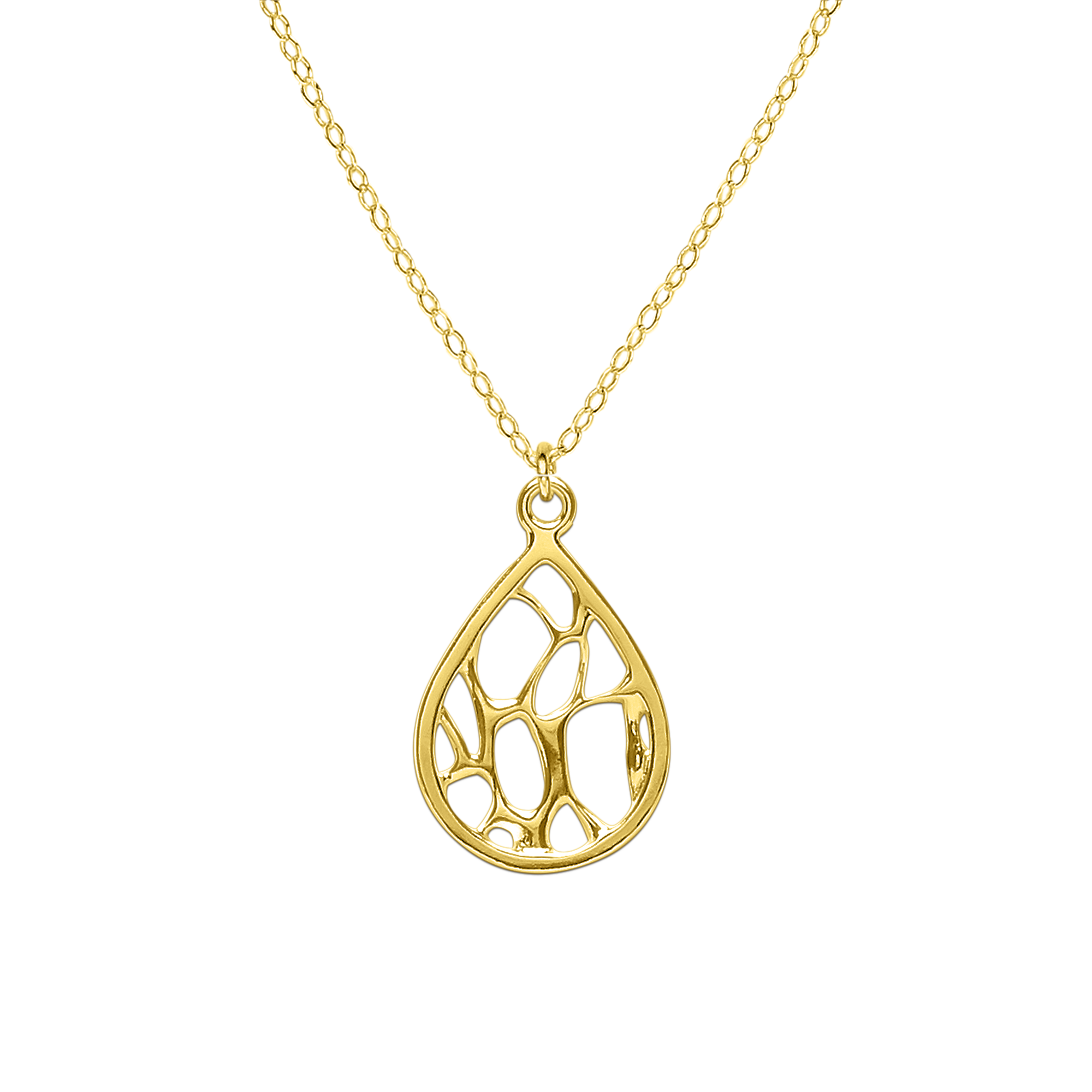 Opuntia Gold Medium Framed Teardrop Cactus Necklace