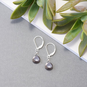Gray Moonstone Leverback Earrings