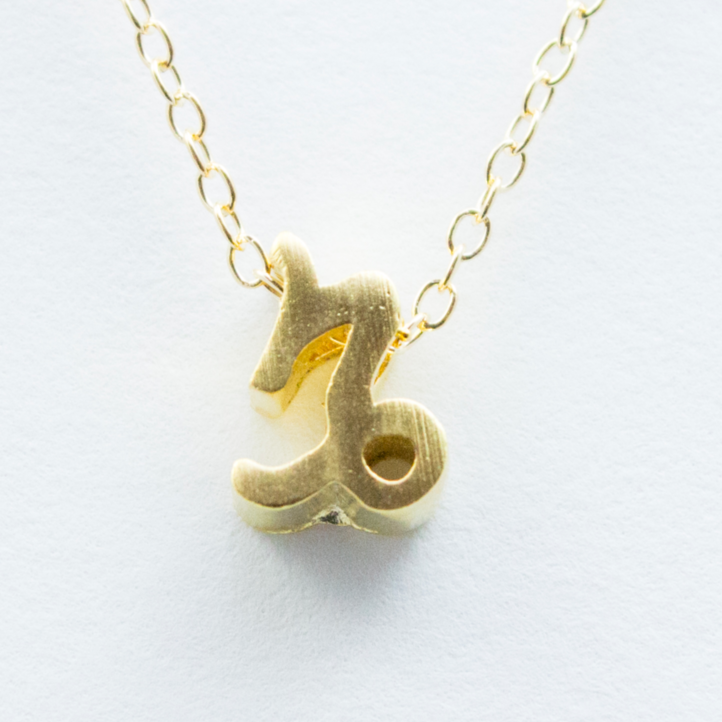 3D Zodiac Sign Capricorn Necklace - 24k Gold Horoscope Charm Necklace