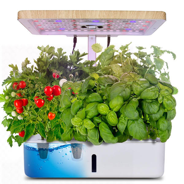 What is Hydroponics Growing System and How Does It Work?