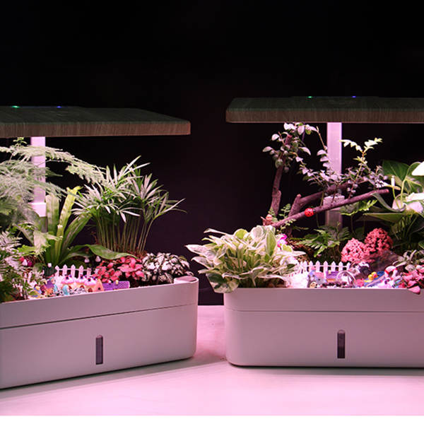 12 Plant Pots Hydroponics Growing System, Plant Germination Starter Kits& LED Grow Light for Garden
