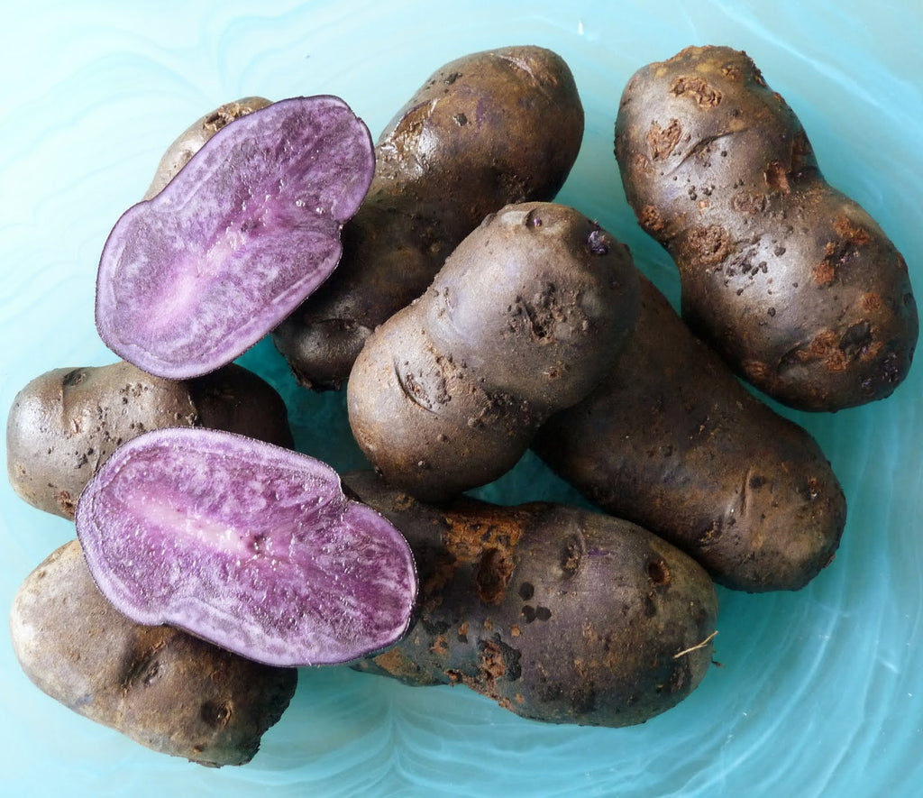 River John Blue Potatoes