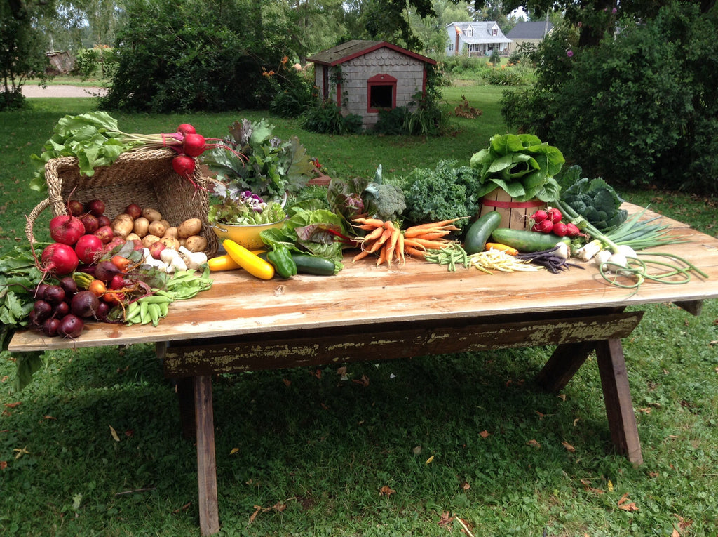 Longspell Point Farm Seasonal Veggie Basket