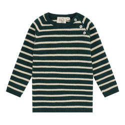 Flöss Aps Flye Sweater Sweater Green Stripe