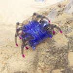 DIY Spider robot building kit development made easy for kids