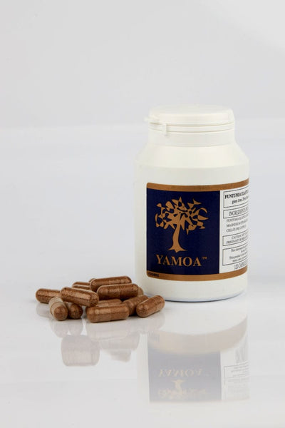 TRADE - Yamoa™ Food Supplement for Respiratory Allergies