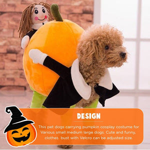 Funny Pumpkin Pet Costume