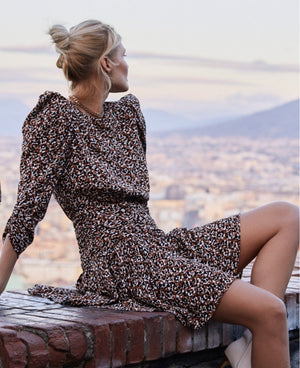 Savannah Animal Print Dress