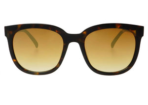 Taylor Sunglasses in Tortoise
