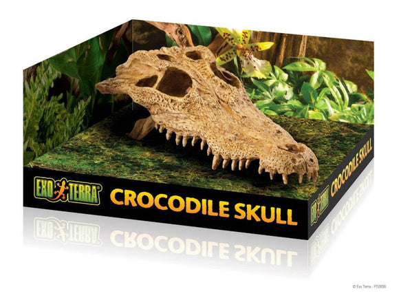 Exo Terra crocodile skull (escondite)