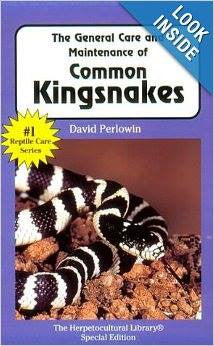 The General Care and Maintenance of Common Kingsnakes