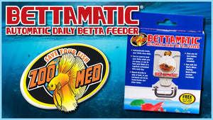 ZOOMED BETTA MATIC