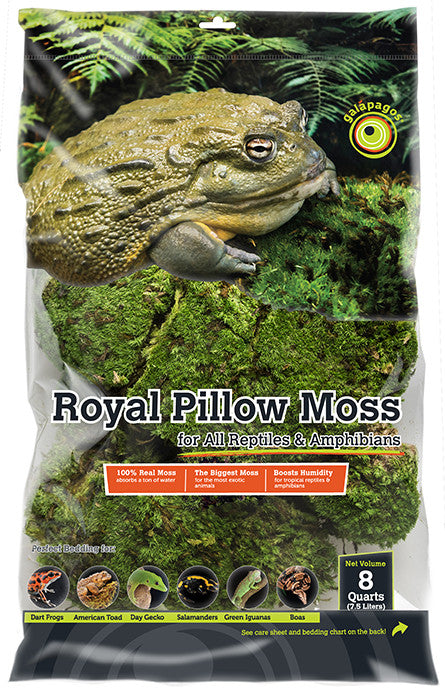 GALAPAGOS ROYAL PILLOW MOSS 8 QUARTS