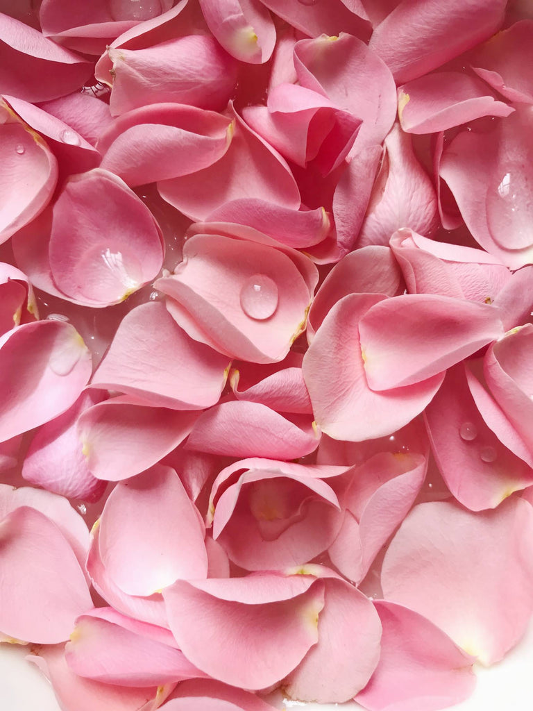 5 Ways You Can Use Rose Water in Your Daily and Nightly Routine