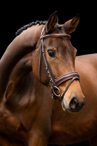 New MacRider DELUXE reins With Stops Brown//Brown Stitching $120
