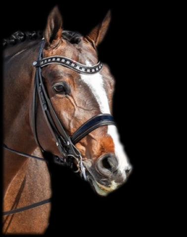 Browband Type D