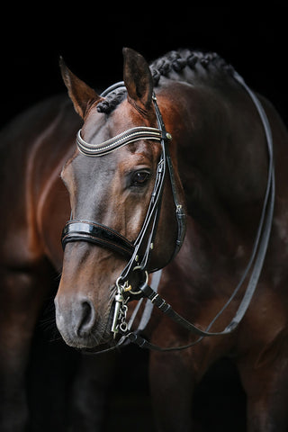 Browband Type C