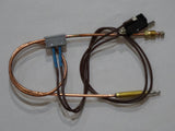 Pyrox thermocouple lead with microswitch