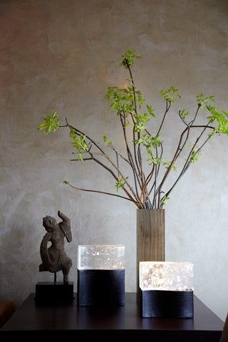 Plant on surface with sculpture