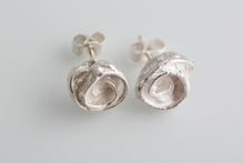 Load image into Gallery viewer, acacia-seed-pod-collection-silver-ear-studs