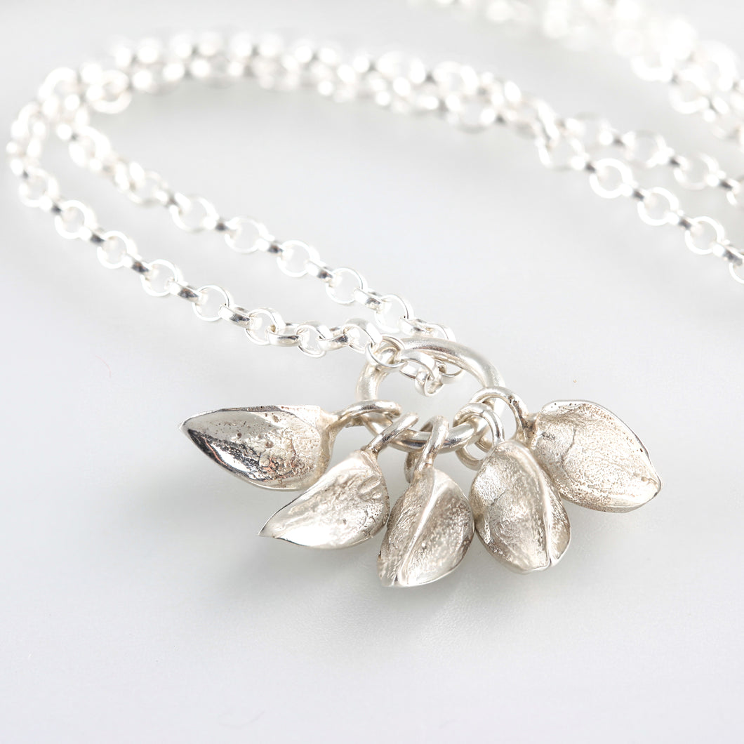 Beech mast collection w 5  sterling silver nuts