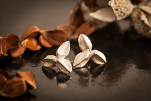 Load image into Gallery viewer, bech-mast-collection-silver-studs-3-nuts